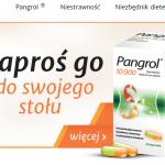 Koncepcja obecności marki Pangrol w internecie