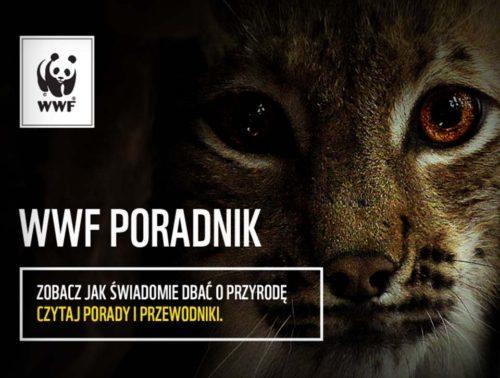 Aplikacja Poradnik WWF