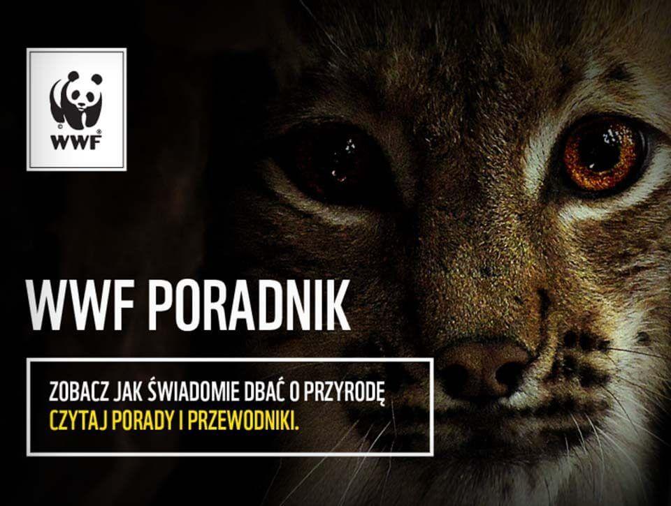 Użytkownicy doceniają Poradnik WWF